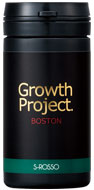 Growth Project.BOSTON